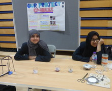 Haverstock school camden science fair candles project